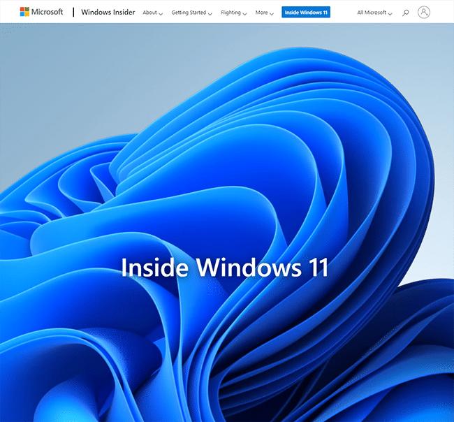 不純Windows11でマルウェア感染|正規外でのDL